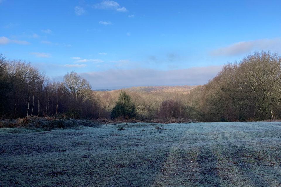 Winter landscape: field, trees, hills